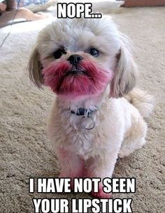 I have not seen your lipstick! Haha!