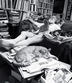 Ernest Hemingway, Crazy Cat Lover All of his cats had six toes You still find six toed cats from his cats' descendants in Key West
