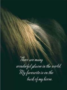"""""""There are many wonderful places in the world. My favorite is on the back of my horse."""""""