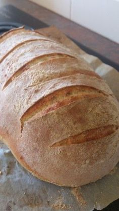 How to make a sourdough loaf (using a thermomix) by an absolute rank amateur - Blog - Cecily. Mostly.