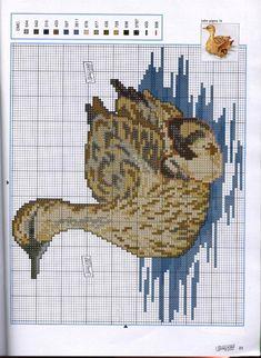 336550-40c17-66988112--ucc05d.jpg (JPEG Image, 731×1000 pixels) - Scaled (54%)