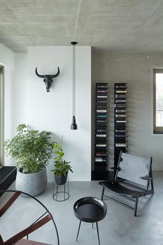 Ideas Apartment Living Room Lighting