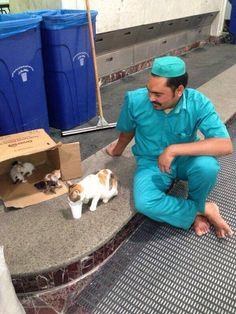 اللهم انزل الرحمة في قلوبنا  القطه ولدت في الصفا والمروة