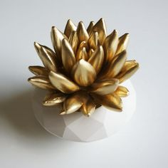 Golden Succulents <3