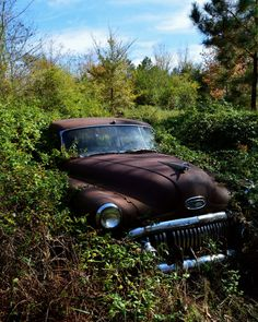 Old Buick in the Bushes van ParkerArts op Etsy