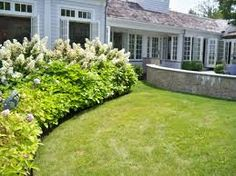 Image result for landscape maintenance Landscape Maintenance, Sidewalk, Plants, Image, Side Walkway, Walkway, Plant, Walkways, Planets