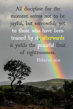 Read More About When we allow God to use our trials to train us, we'll experience the peaceful fruit of righteousness. Biblical Quotes, Scripture Quotes, Faith Quotes, Bible Verses, Scripture Images, Prayer Verses, Righteousness, Christian Inspiration, God Is Good