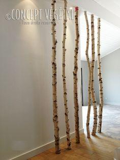 41 Meilleures Images Du Tableau Deco Bouleau Birch Flower