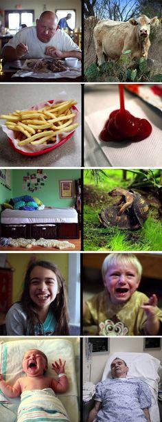 Simetrias da vida são o tema do vídeo vencedor do Vimeo Awards: http://vimeo.com/22564317#