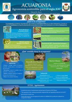 Aquaponics Poster (in Spanish) by Morris Villarroel, Dept. Prouccion Animal, Escuela, Tecnica Superior de Ingenieros Agronomos, UPM, Madrid, Spain