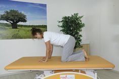 Core Training - Opora na čtyřech se zdviháním kolen Bones And Muscles, Health Fitness, How To Plan, Training, Sport, Healthy, Tela, Coaching, Fitness Workouts