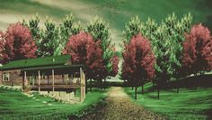 """Manipülasyon çalışmam My photomanipulation triying  #photomanipulation #photoshop #nature #photo #photooftheday #colorful #dizayn #tasarım #green #red…"""