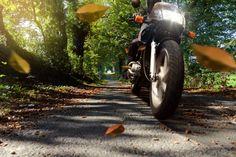 Fahren mit den  besten  Motorradreifen zusammen mit reifendirekt