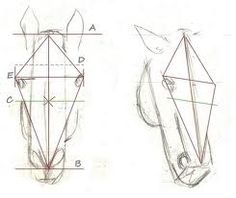 how to draw a horse head step by step - Google Search