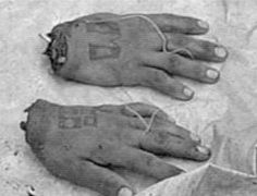 ed gein crime scene - Yahoo Image Search Results Italian Gangster, Famous Murders, Natural Born Killers, True Crime Books, Evil People, Scene Photo, Psychopath, Criminal Minds, Serial Killers