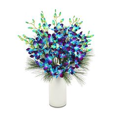 Blue Dendrobium flowers from Serenata deliveries