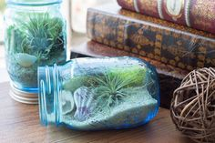 DIY Mason Jar Aquarium | Darby Smart | Decor