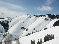 The Sun Down Bowl at Vail- courtesy of Google Images #Mountains #Ski #Snowboard