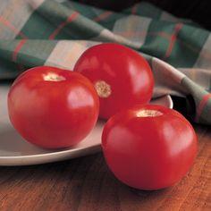 All Tomatoes - Bobcat Tomato Tomato Garden, Tomato Plants, Garden Seeds, Planting Seeds, Easy Garden, Lawn And Garden, Beefsteak Tomato, Red Tomato, Tomato Seeds