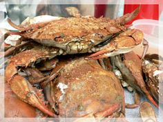 A search for Maryland Crabs on our website returns over 100 pages with information on everything in Baltimore related to the Maryland Blue Crab from habitat to dinner plate. Baltimore Crab, Crab Restaurant, Steamed Crabs, Crab Feast, Best Crabs, Seafood Market, Best Food Ever, Fresh Seafood, No Cook Meals