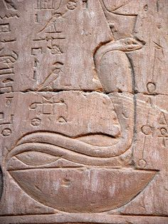 A wide variety of animals can be seen on the walls of the Temple of Horus, Edfu, Egypt.
