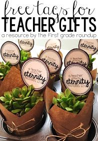 How to make this easy and adorable succulent plant gift for less than $3.00 each! This is perfect for teacher appreciation week or any other time of the school year. And grab the FREE labels!