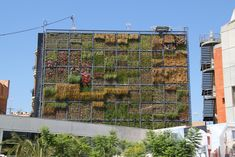 Jardín vertical de San Vicente