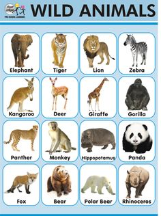 Easy learning : Animals Chart - Wild Animals names. #HowTo #kids #kidslearning #animalnames