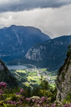 allthingseurope:     Dachstein Austria (by Michelle Cardwell) | Mind Your Own Business mindyourownbiz.alphalim.me