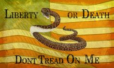 Grunge Dont Tread On Me The Gadsden Flag Is Wallpaper For Your 1600x1200 Don