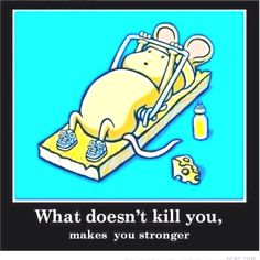 What doesn't kill you, makes you stronger...
