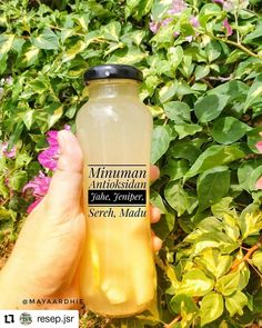 #Repost @resep.jsr • • • • • • Reposted from @mayaardhie -  Bismillah.. Minuman antioksidan yang gampang banget dibuat.. Bahannya : . air panas . 1 jari jahe geprek . 1 batang sereh . 1/2 jeniper . Madu  Cara membuatnya : Seduh semua bahan dengan air panas kecuali madu, setelah hangat tambahkan madu sesuai selera. . .