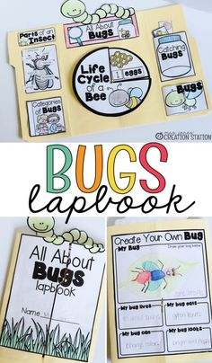 This bugs lapbook is a great activity for little learners! It is so important for kids to learn about science and with this lapbook they can learn about the life cycle of bugs! Try this great bug lapbook with you little learners today! Kindergarten Science, Teaching Science, Science For Kids, Science Nature, Life Science, Teaching Resources, Insect Activities, Science Activities, Activities For Kids