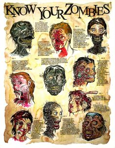 The seminal educational Zombie Poster for by ZombiePortraitscom, $15.00