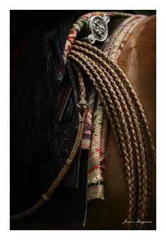 Dia Nacional del Gaucho - Chivilcoy - Foto Javier Mosquera Cowboy Gear, Cowboy Up, Horse Saddles, Horse Tack, Western Games, Horse Adventure, Billy Collins, Charro, Rio Grande Do Sul