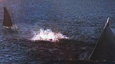 Megalodon Shark Caught on Tape - Shark Bites Whale in Half - MEGALODON S...