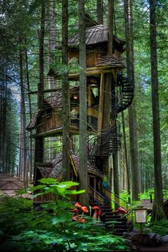 A magical tree house for adults :)