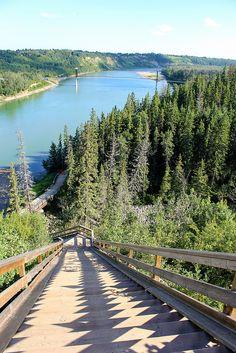 Edmonton, Alberta, Canada.  North Saskatchewan River Valley staircase - a jogger's delight.