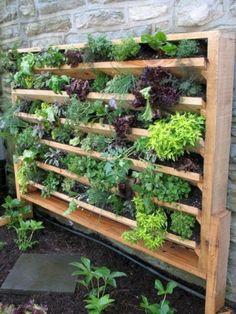 39 DIY Hydroponic Gardens for Your Small House ~ GODIYGO.COM