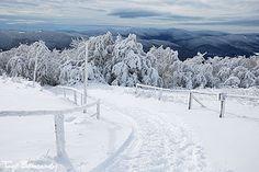 Zima na Połoninie Wetlińskiej