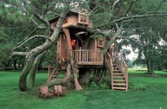 green building with wood and tree house designs