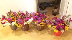 Nossos arranjos florais para ação do Dia Intenacional da Mulher do @casaramona. Se estiver pelo centro da cidade passe por lá hoje e leve um desses pra casa  #oitominhocas #arranjofloral #floweroftheday #diainternacionaldamulher #liberdadesemmedo #vemprocentro