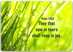 Psalms Verses, Uplifting Bible Verses, Psalm 126 5, Encouragement