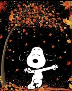 Snoopy Wallpaper, Fall Wallpaper, Halloween Wallpaper, Images Snoopy, Snoopy Pictures, Peanuts Cartoon, Peanuts Snoopy, Snoopy Halloween, Fall Halloween