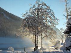 Winter im Salzburger Land/Salzkammergut Hallstatt, Austria, Outdoor, Mountains, Environment, Hiking, Outdoors, Outdoor Games, Outdoor Life