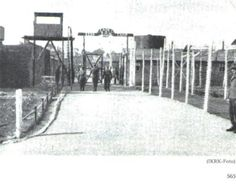 POW camp 2226 2 in Belgium where my father Axel von Schulmann was held at the end of the war Old Family Photos, Old Photos, My Father, 2 In, Belgium, Old Things, Camping, Snow, Ww2