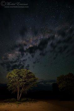 Kgalagadi night