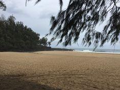 Ein toller langer Sandstrand, den wir, aufgrund von eher kühlem Wetter, fast für uns alleine hatten :).
