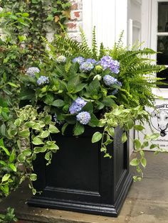 We know that when designing your outdoor space, you take the time to think about not only how you want the area to look, but also how much time you want to spend maintaining everything. Oftentimes plants and planters can be intimidating, and many home owners avoid adding them to save themselves an hour of watering each day. But that doesn't have to be the case! Boxwood Landscaping, Landscaping With Rocks, Front Yard Landscaping, Front Porch Landscape, Front Porch Plants, Mulch Around Trees, Plastic Planters, Short Plants, Square Planters