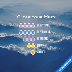 Clear Your Mind — Essential Oil Diffuser Blend